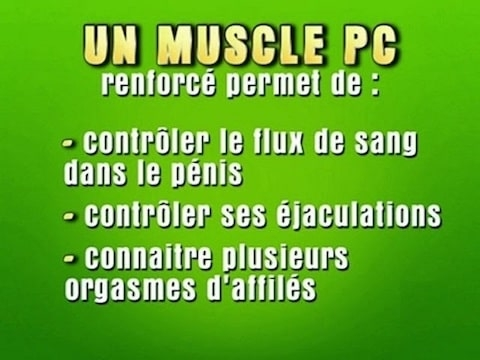 Exercices renforcer le muscle pc